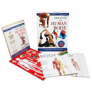 Discover the Human Body book set