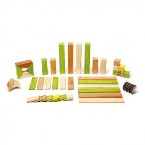 Tegu Magnetic Wooden Blocks Jungle 42 Pieces