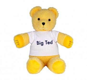 abc big ted plush doll